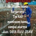 Anti Rayap Bsd Tenggerang Call : 0813-1022-2548