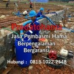 anti rayap bangunan 100% ampuh call 0813-1022-2548