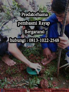Predatorhama: Pembasmi Rayap Hubungi : 0813-1022-2548